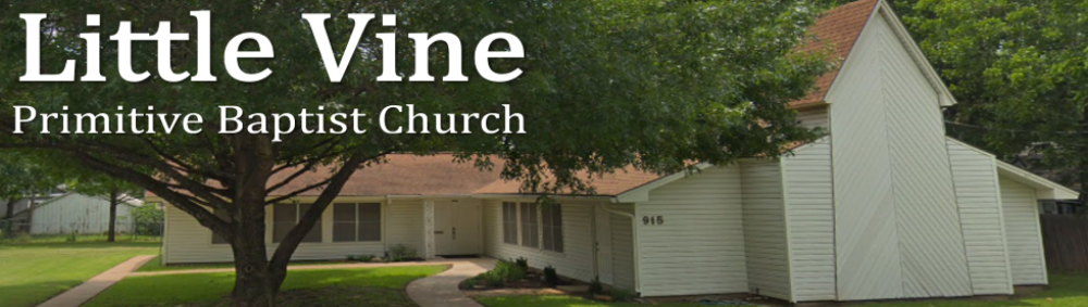 Little Vine Primitive Baptist Church